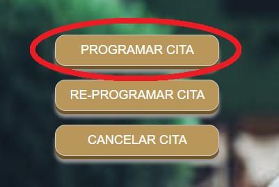 opcion programar cita fonacot
